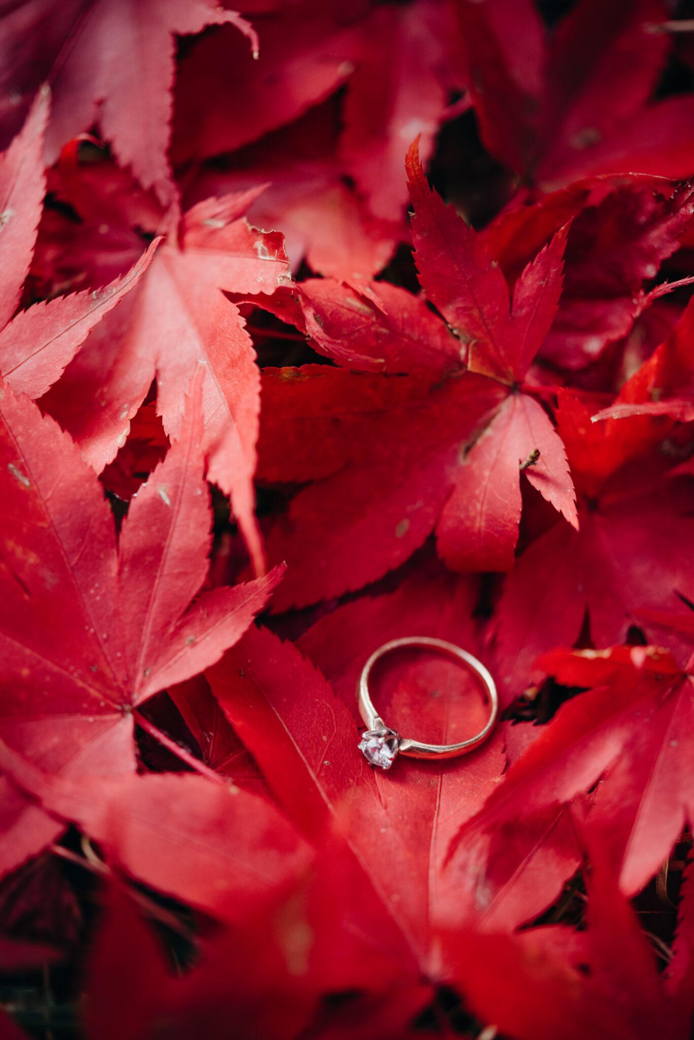 Ślub-z-innej-bajki-87